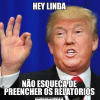 HEY LINDANÃO ESQUEÇA DE PREENCHER OS RELATORIOS