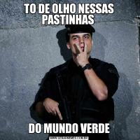 TO DE OLHO NESSAS PASTINHAS DO MUNDO VERDE