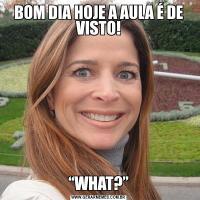 """BOM DIA HOJE A AULA É DE VISTO!""""WHAT?"""""""