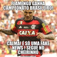 FLAMENGO GANHA CAMPEONATO BRASILEIRO!CALMA! É SÓ UMA FAKE NEWS ! SEGUE NO CHEIRINHO