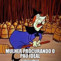 MULHER PROCURANDO O PAU IDEAL