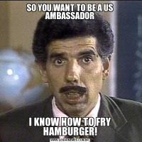 SO YOU WANT TO BE A US AMBASSADORI KNOW HOW TO FRY HAMBURGER!
