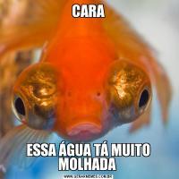 CARAESSA ÁGUA TÁ MUITO MOLHADA