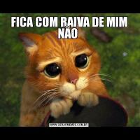 FICA COM RAIVA DE MIM NÃO