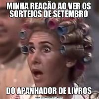 MINHA REAÇÃO AO VER OS SORTEIOS DE SETEMBRODO APANHADOR DE LIVROS