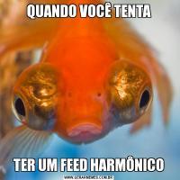 QUANDO VOCÊ TENTATER UM FEED HARMÔNICO