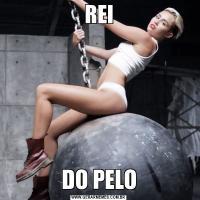 REIDO PELO