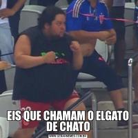 EIS QUE CHAMAM O ELGATO DE CHATO