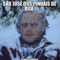 SÃO JOSÉ DOS PINHAIS DE BOA