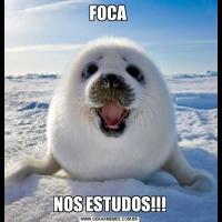 FOCA NOS ESTUDOS!!!