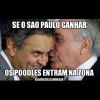 SE O SAO PAULO GANHAROS POODLES ENTRAM NA ZONA