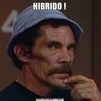 HIBRIDO !