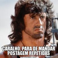 CARALHO. PARA DE MANDAR POSTAGEM REPETIDAS
