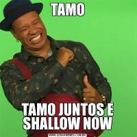 TAMOTAMO JUNTOS E SHALLOW NOW