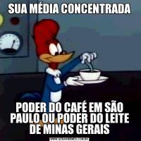 SUA MÉDIA CONCENTRADAPODER DO CAFÉ EM SÃO PAULO OU PODER DO LEITE DE MINAS GERAIS