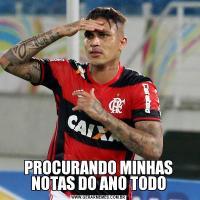 PROCURANDO MINHAS NOTAS DO ANO TODO
