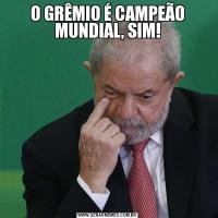 O GRÊMIO É CAMPEÃO MUNDIAL, SIM!