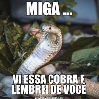 MIGA ...VI ESSA COBRA E LEMBREI DE VOCÊ