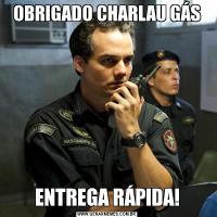 OBRIGADO CHARLAU GÁSENTREGA RÁPIDA!