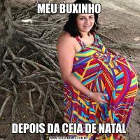 MEU BUXINHODEPOIS DA CEIA DE NATAL