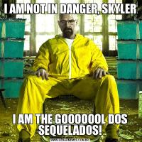I AM NOT IN DANGER, SKYLERI AM THE GOOOOOOL DOS SEQUELADOS!