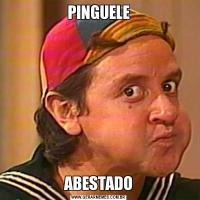 PINGUELEABESTADO