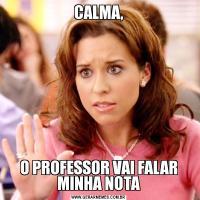 CALMA,O PROFESSOR VAI FALAR MINHA NOTA