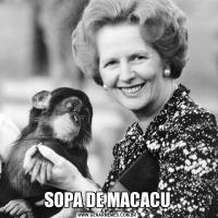 SOPA DE MACACU