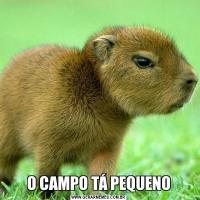 O CAMPO TÁ PEQUENO
