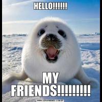 HELLO!!!!!!MY FRIENDS!!!!!!!!!