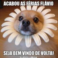 ACABOU AS FÉRIAS FLÁVIOSEJA BEM VINDO DE VOLTA!