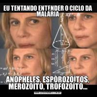 EU TENTANDO ENTENDER O CICLO DA MALÁRIAANOPHELES, ESPOROZOÍTOS, MEROZOÍTO, TROFOZOÍTO...