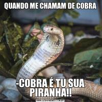 QUANDO ME CHAMAM DE COBRA-COBRA É TU SUA PIRANHA!!