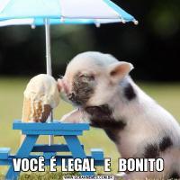 VOCÊ  É  LEGAL   E   BONITO