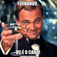 FERNANDO, VC É O CARA!
