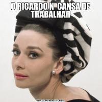O RICARDO N  CANSA DE TRABALHAR